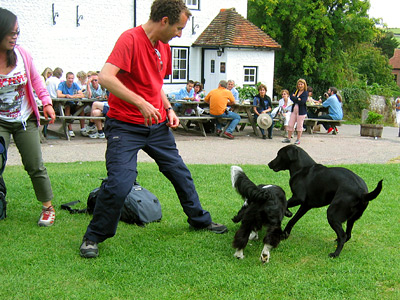 Playing fetch with dogs at the Tiger Inn, East Dean village, East Sussex