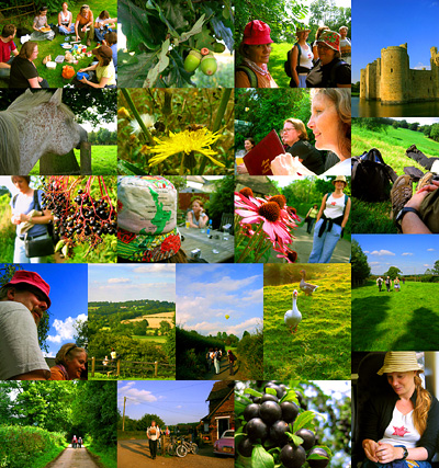 Photo montage of English Country Walks day trip to Bodiam Castle