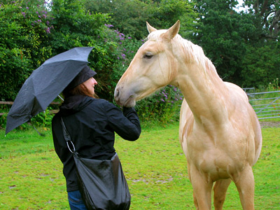 Elena and horse at Court Lodge Farm, Bodiam