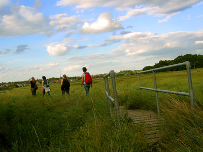 English Country Walks group crossing the Roman River marshes near Rowhedge