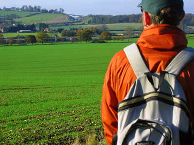 Dale and the Bulbourne Valley