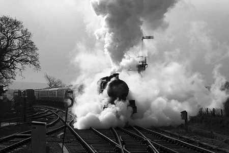 Steam train at Bishops Lydeard