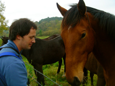 David feeding horses near Springbottom Farm